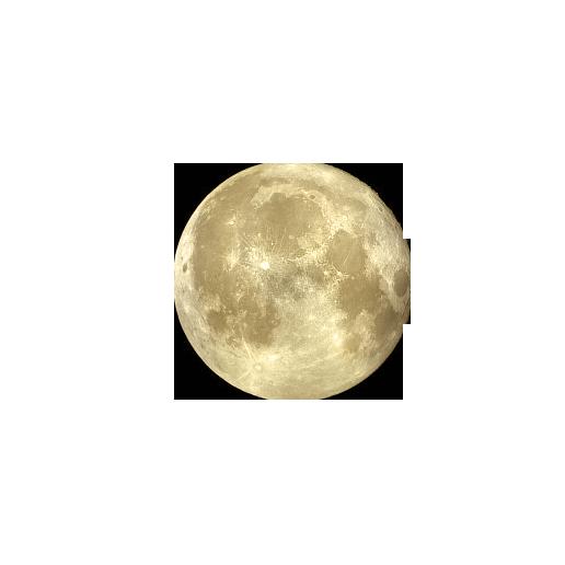 moon_artdesigncat.com
